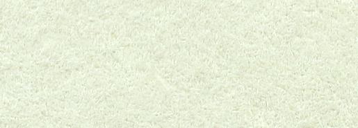 Pistachio