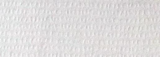 White Ever